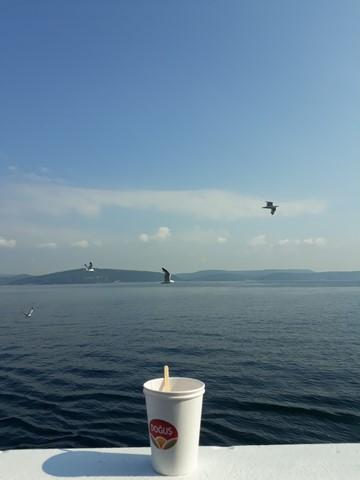 gökçe ada feribot